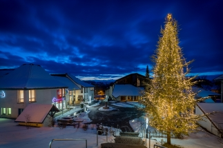 Weihnachtsbaum-Brigachtal_HJG20170116
